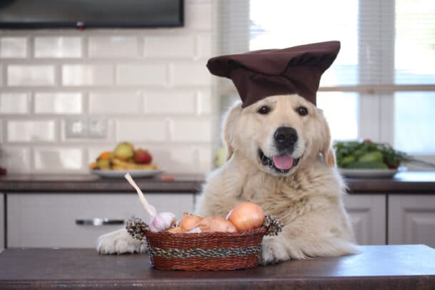 A dog cooking at a kitchen counter with garlic.