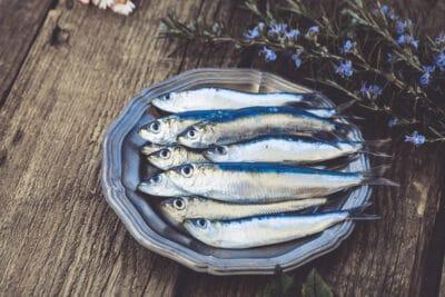 Fresh sardines. on a plate.
