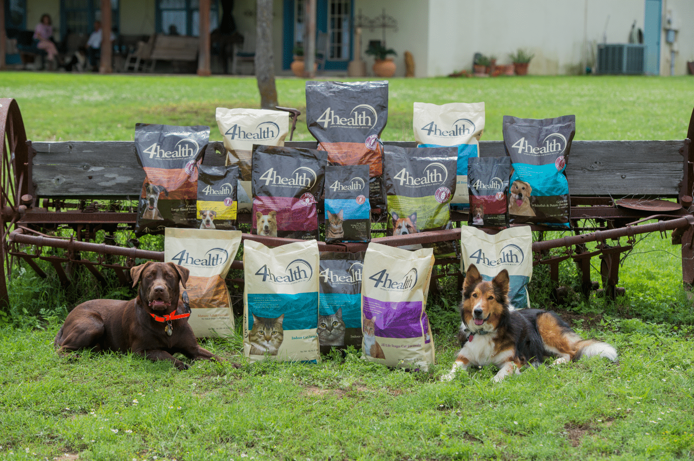 4Health Dog Food Outdoors