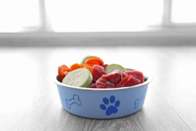 a bowl of healthy dog food on the floor