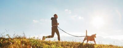 Man runs with his beagle dog at sunny morning